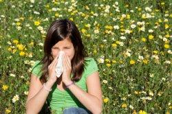 Rhume des foins et homéopathie